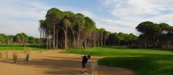 Sueno Pines Golf Club